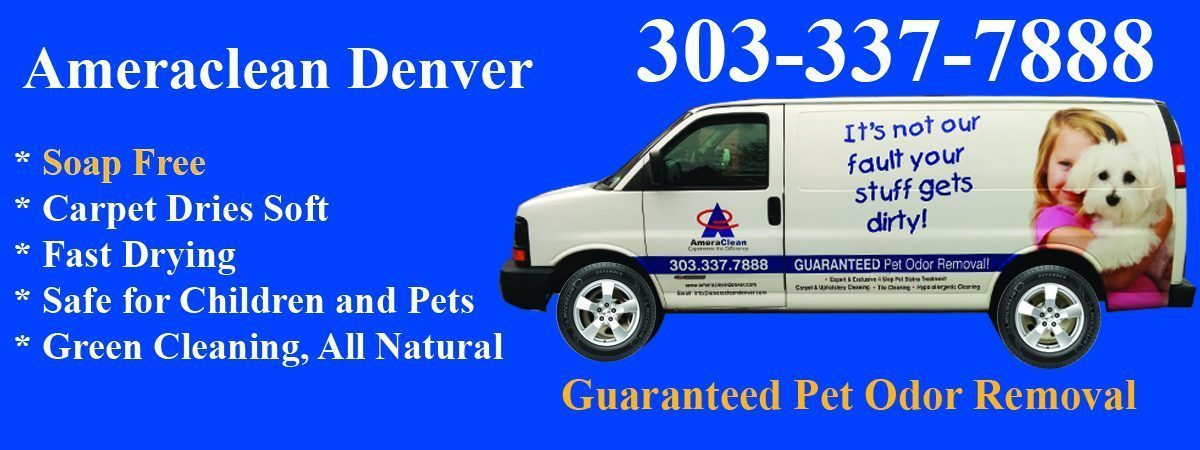 Carpet Cleaning Parker Colorado